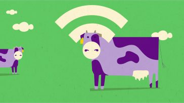 Internet of Cows – H τεχνολογία μεταμορφώνει την κτηνοτροφία
