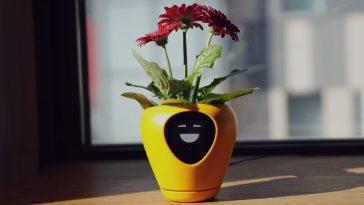 Η έξυπνη γλάστρα που μετατρέπει τα φυτά σε κατοικίδια